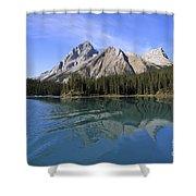 Distorted Shower Curtain