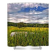 Ditch Dreaming Shower Curtain