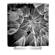 Ditch Lace Bw Shower Curtain