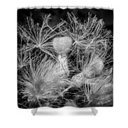 Ditch Party 2 Bw Shower Curtain