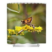 Diversity - Insects Shower Curtain
