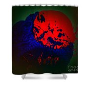 Divide Shower Curtain
