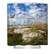 Divine Beach Day  Shower Curtain