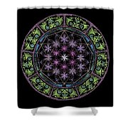 Divine Feminine Energy Shower Curtain