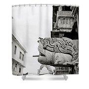 Divine Jagdish Temple Shower Curtain