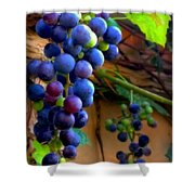 Divine Perfection Shower Curtain by Karen Wiles