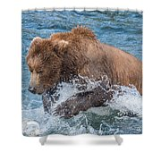 Diving For Salmon Shower Curtain