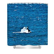 Diving I Shower Curtain