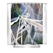Do Flowers Dance? Shower Curtain by Melodye Whitaker