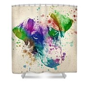 Doberman Splash Shower Curtain