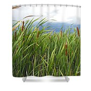 Dobie Swamp Tails Shower Curtain