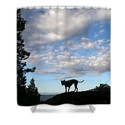 Dog And Sky Shower Curtain