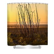 Dog Canyon Sunset Shower Curtain