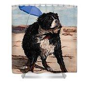 Dog Days Of Summer V2 Shower Curtain