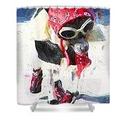 Dog Daze 8 Shower Curtain