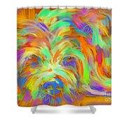 Dog Matze Shower Curtain