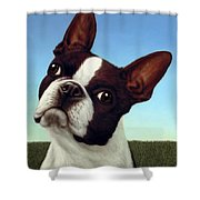 Dog-nature 4 Shower Curtain by James W Johnson