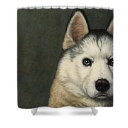 Dog-nature 9 Shower Curtain by James W Johnson