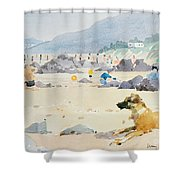 Dog On The Beach Woolacombe Shower Curtain by Lucy Willis