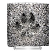 Dog Paw Print In Sand Shower Curtain by Elena Elisseeva