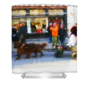 Dog Sleigh Ride Shower Curtain