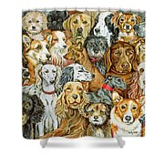 Dog Spread Shower Curtain by Ditz
