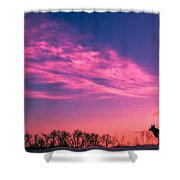 Dog Sunrise 2 Shower Curtain