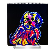 Dog Tibetin Lhasa Apsos  Shower Curtain