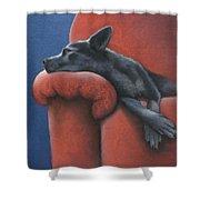 Dog Tired Shower Curtain by Cynthia House