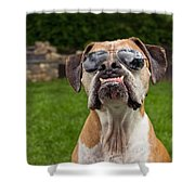 Dog Wearing Sunglass Shower Curtain by Stephanie McDowell