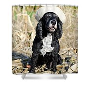 Dog With A Sailor Hat Shower Curtain