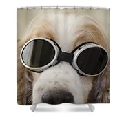 Dog With Eyeglasses Shower Curtain