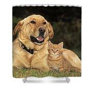 Dog With Kitten Shower Curtain