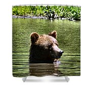 Doggy Paddle Shower Curtain
