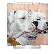 Dogo Argentino Shower Curtain