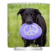 Dogs For Peace Shower Curtain