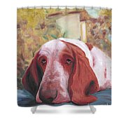 Dog's Portrait No 1 Shower Curtain