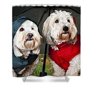 Dogs Under Umbrella Shower Curtain by Elena Elisseeva