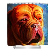 Vibrant Dogue De Bordeaux Painting On Blue Shower Curtain
