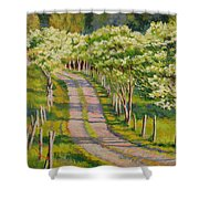 Dogwood Allee Shower Curtain