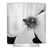 Dogwood Black And White 2 Shower Curtain