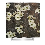 Dogwood Winter Shower Curtain