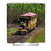 Dole Planation Shower Curtain