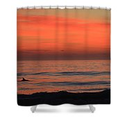 Dolphin At Cape Hatteras Shower Curtain