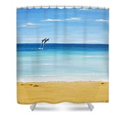 Dolphin Beach Shower Curtain