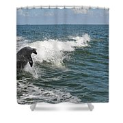 Dolphin In Waves Shower Curtain