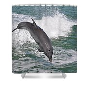 Dolphin Leap Shower Curtain