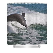 Dolphin Riding The Waves Shower Curtain