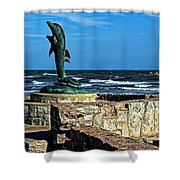 Dolphin Statue Shower Curtain