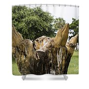 Dolphin Tree In Melbourne Beach Florida Shower Curtain by Allan  Hughes
